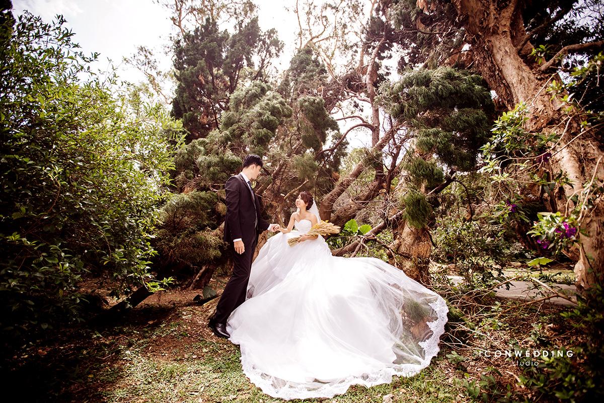 陽明山芒草原,擎天岡,婚紗照,拍婚紗,婚紗攝影